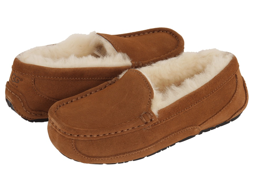UGG Kids Ascot (Little Kid/Big Kid) (Chestnut) Kids Shoes
