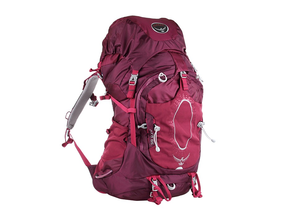 Osprey - Aura 65 (Eggplant Purple) Backpack Bags