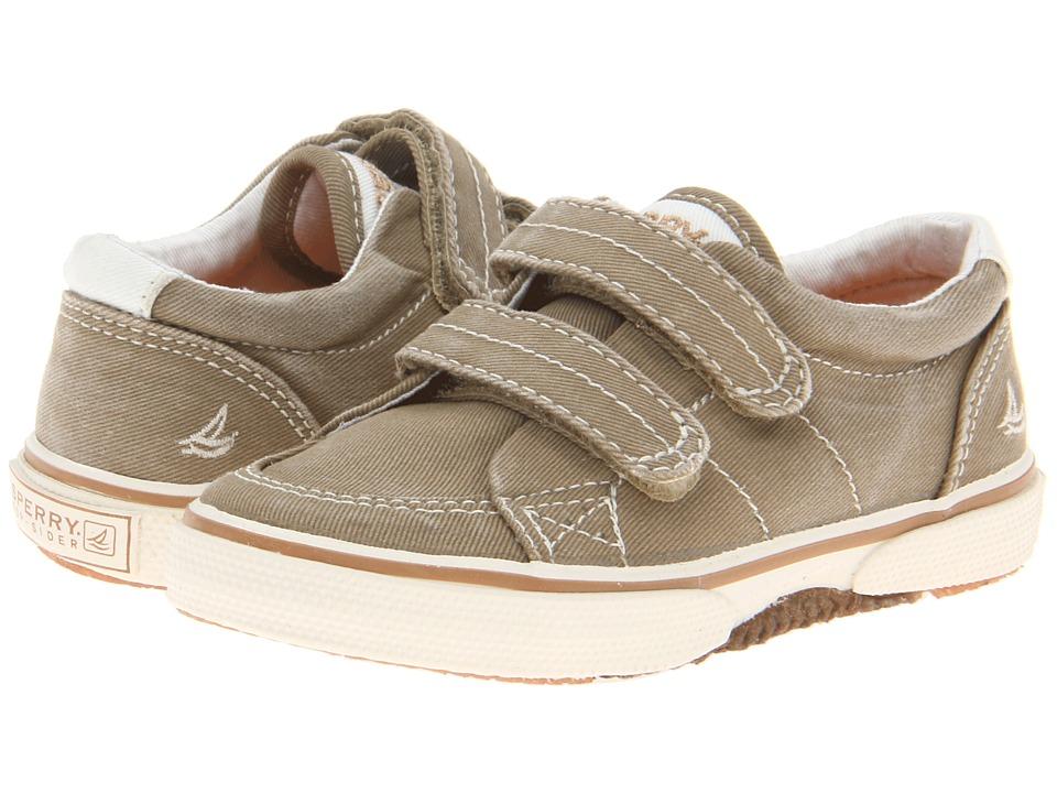 Sperry Kids - Halyard HL Crib (Infant/Toddler) (Khaki) Boys Shoes