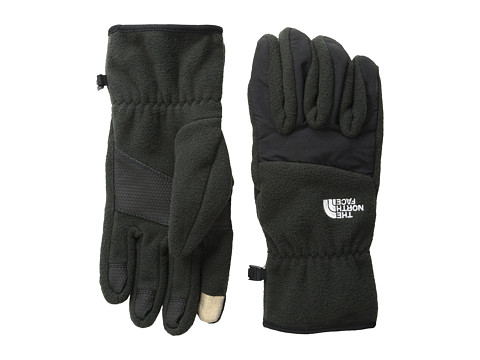The North Face Men's Etip Denali Glove (TNF Black) Extreme Cold Weather Gloves