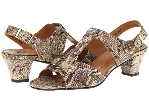 Rose Petals - Lottie (Taupe/Gold Wash Snake Print) Women