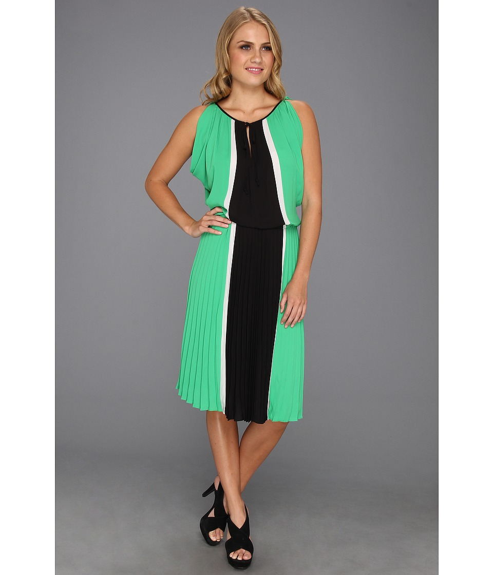 BCBGMAXAZRIA Iona Color Blocked Dress w/Pleated Skirt (Evergreen Combo) Women