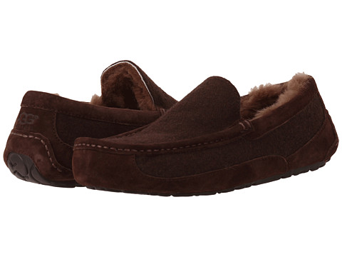 UGG - Ascot Wool (Stout) Men