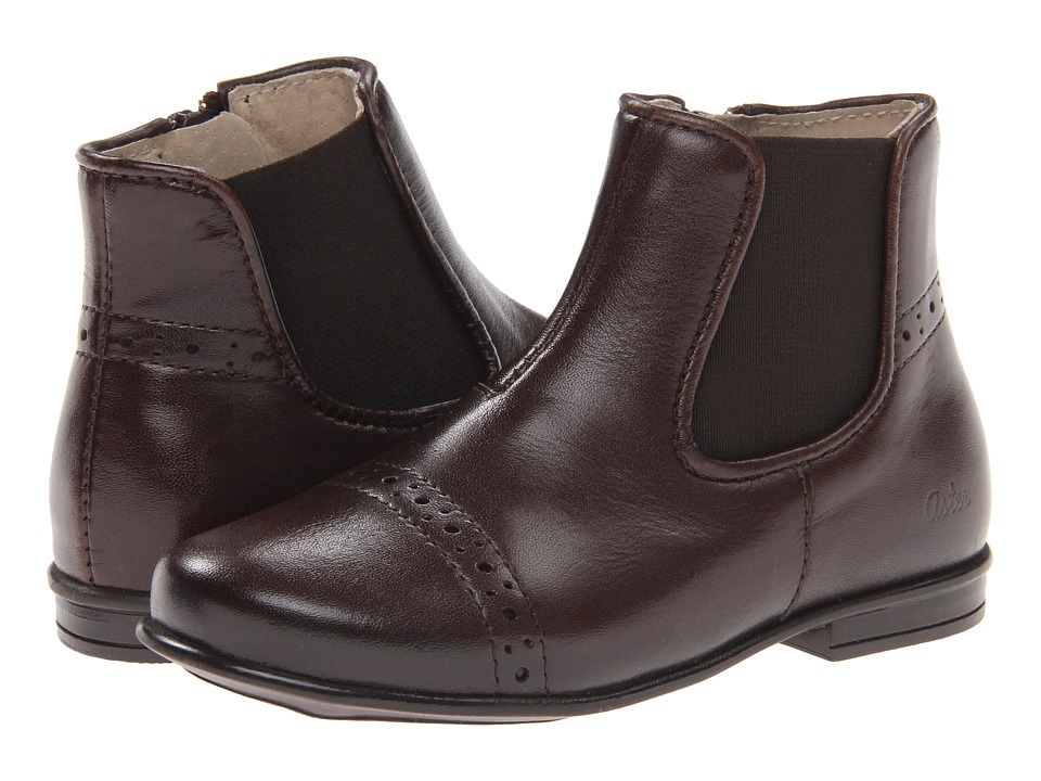 Image of Aster Kids - Darjeeling (Toddler/Little Kid/Big Kid) (Brown Leather) Girls Shoes