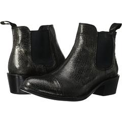 Dolce Vita Venice (Anthracite) Footwear