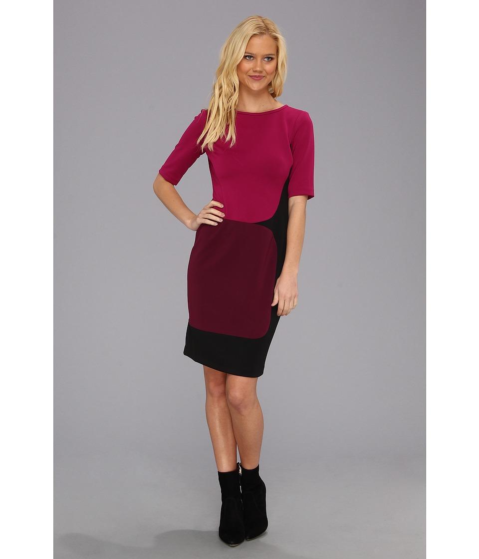 Maggy London Elbow Sleeve Color Block Scuba Dress Womens Dress (Purple)