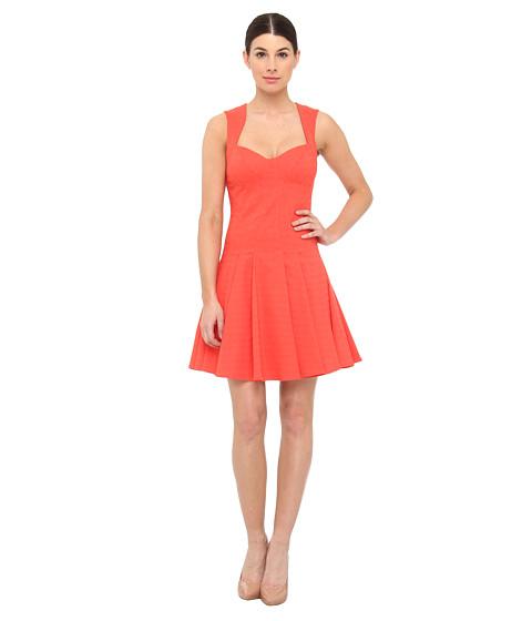 ZAC Zac Posen - ZP03-5007 (Cayanne) Women's Dress