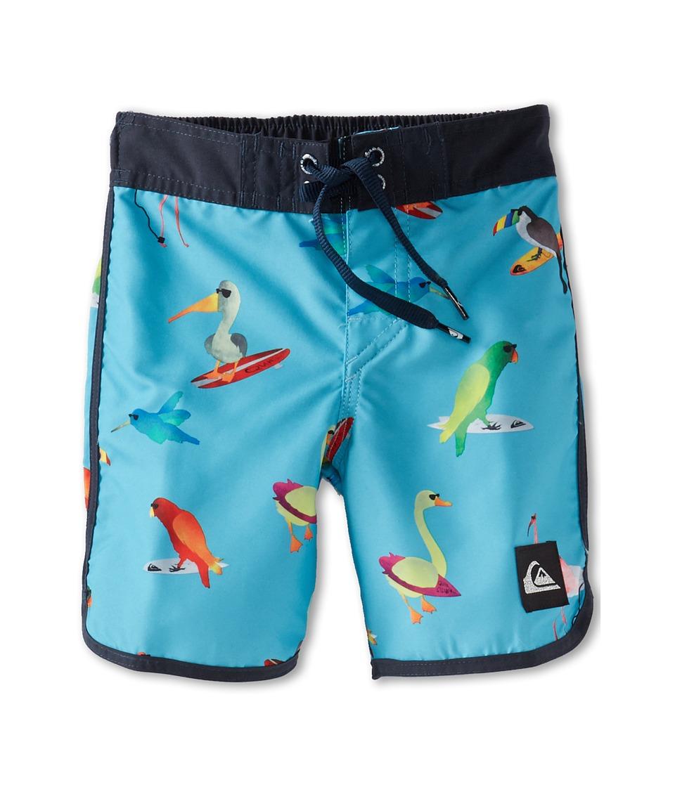 Quiksilver Kids Pollybird Boardshort Boys Swimwear (Green)