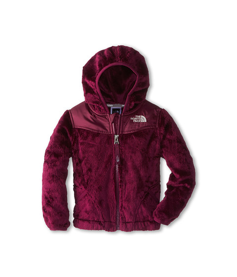 The North Face Kids - Oso Hoodie (Toddler) (Parlour Purple) Girl