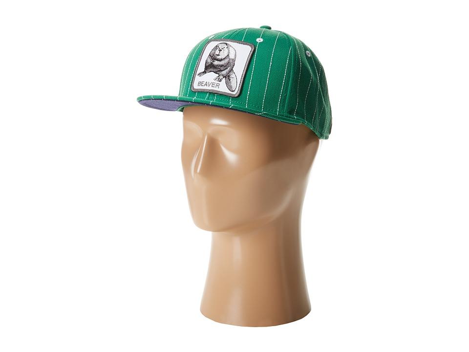 Goorin Brothers - Beaver Town (Grey) Baseball Caps