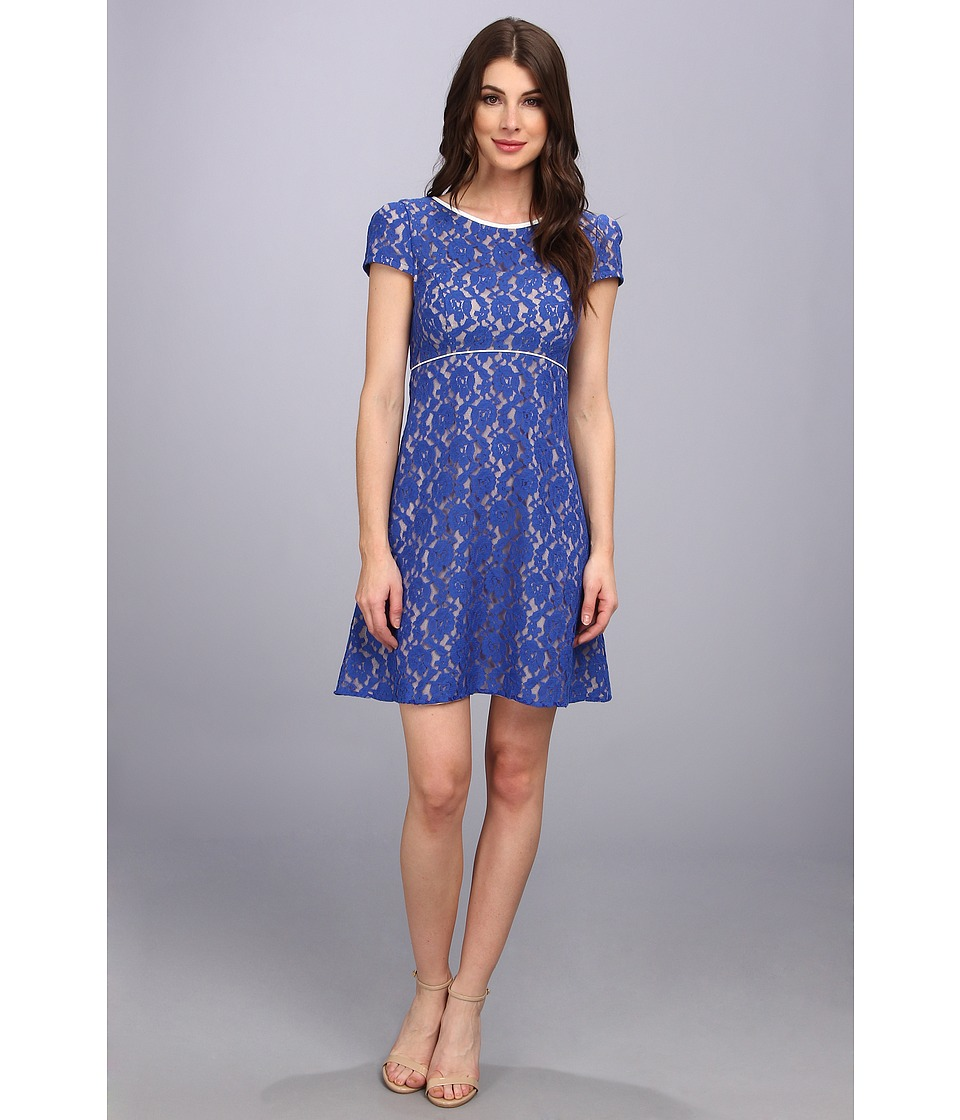 ABS Allen Schwartz - Baby Doll Lace Dress (Royal) Women's Dress