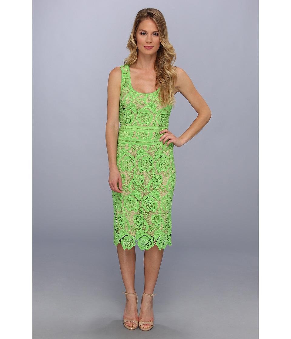 Nicole Miller Venice Lace Dress Womens Dress (Green)