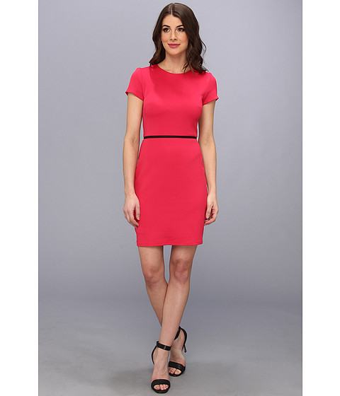 Bailey 44 - Playset Dress (Rose) Women's Dress