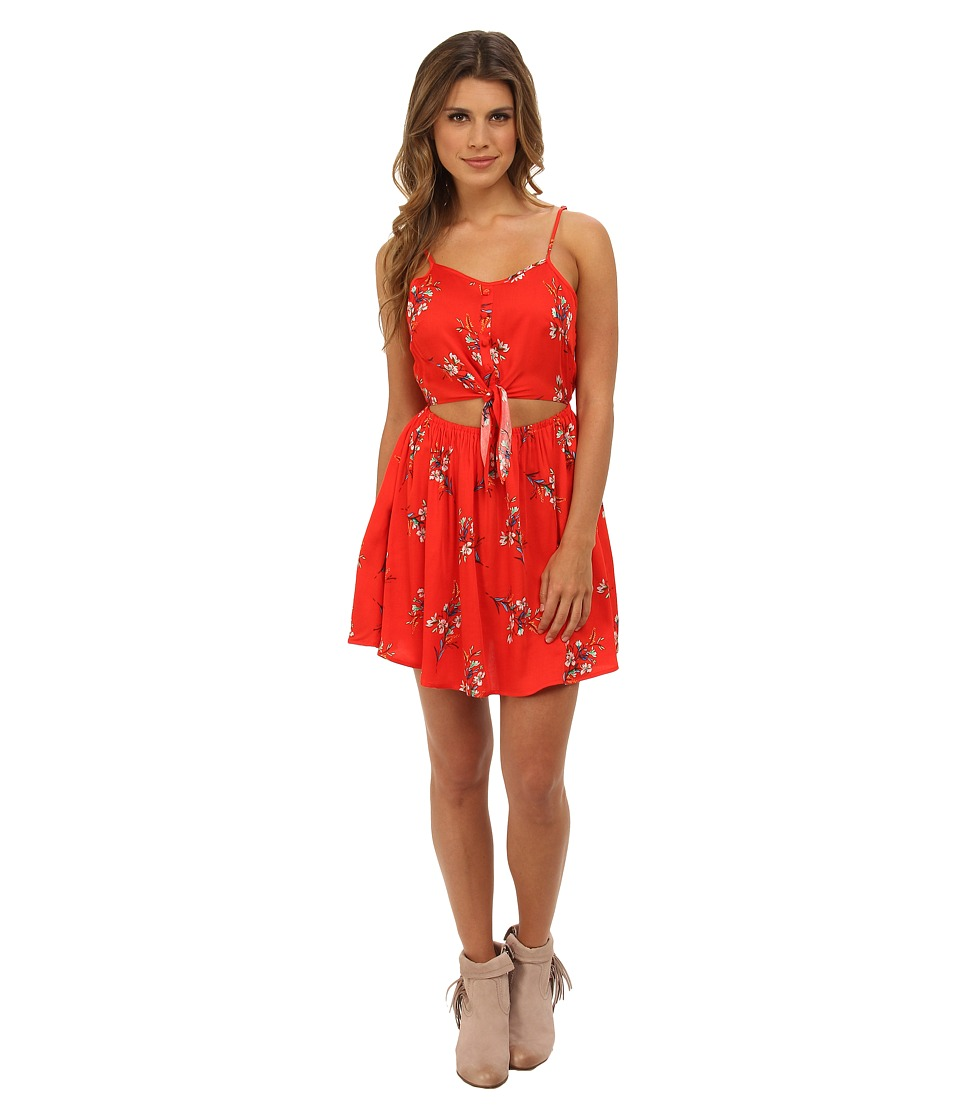 MINKPINK - Flower Posy Dress (Multi) Women