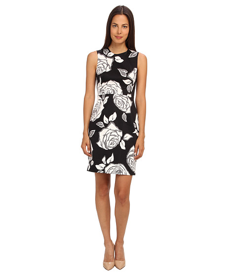 Kate Spade New York - Aires Rose Abbey Dress (Black Aires Rose) Women