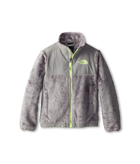 The North Face Kids - Denali Thermal Jacket (Little Kids/Big Kids) (Metallic Silver/Rave Green) Girl's Coat
