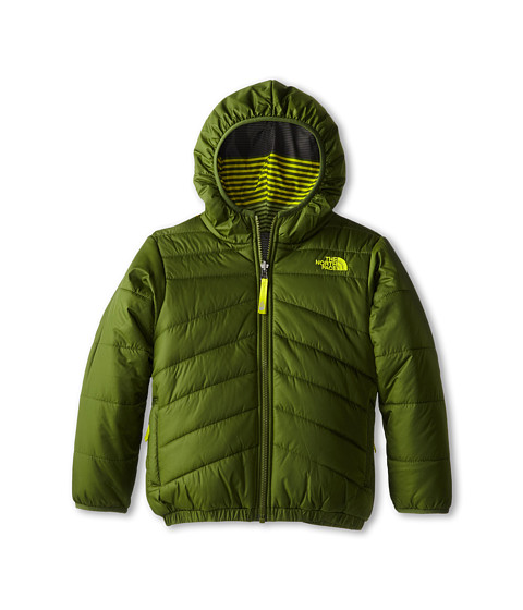 The North Face Kids - Reversible Perrito Jacket (Little Kids/Big Kids) (Scallion Green) Boy