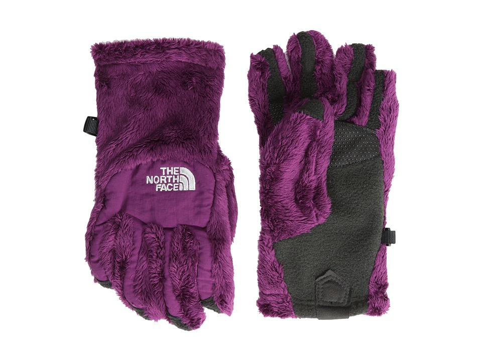 The North Face Kids - Denali Thermal Etip Glove (Big Kids) (Parlour Purple) Extreme Cold Weather Gloves