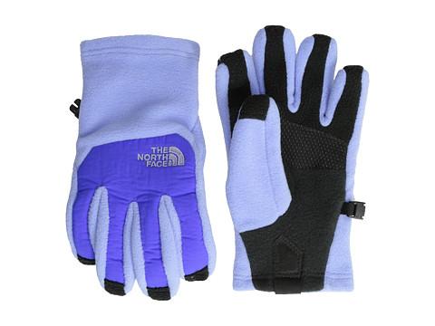 The North Face Kids - Denali Etip Glove (Big Kids) (Dynasty Blue) Extreme Cold Weather Gloves
