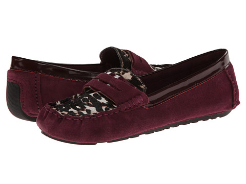 Gentle Souls - Portobello (Multi Pony) Women's Shoes