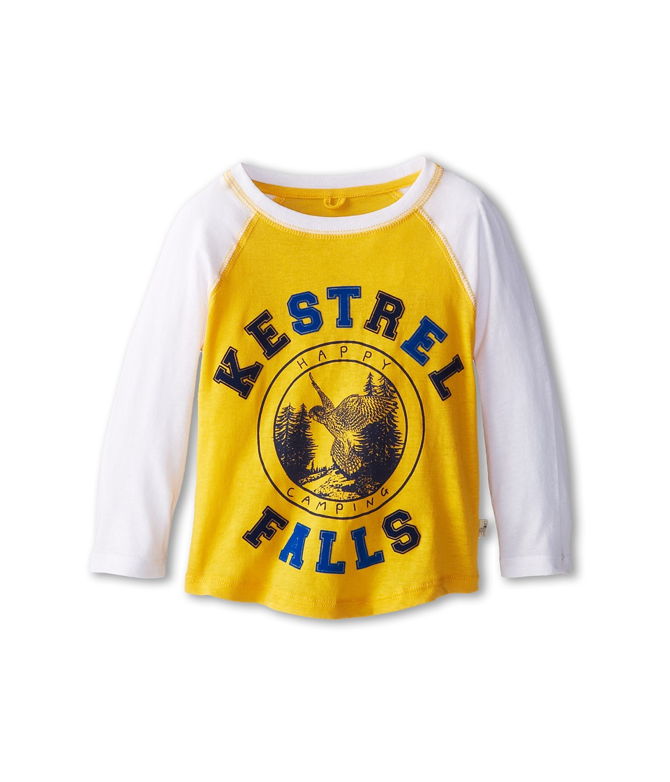 Stella McCartney Kids - Max Boys Kestrel Falls Raglan Tee (Toddler/Little Kids/Big Kids) (Yellow) Boy