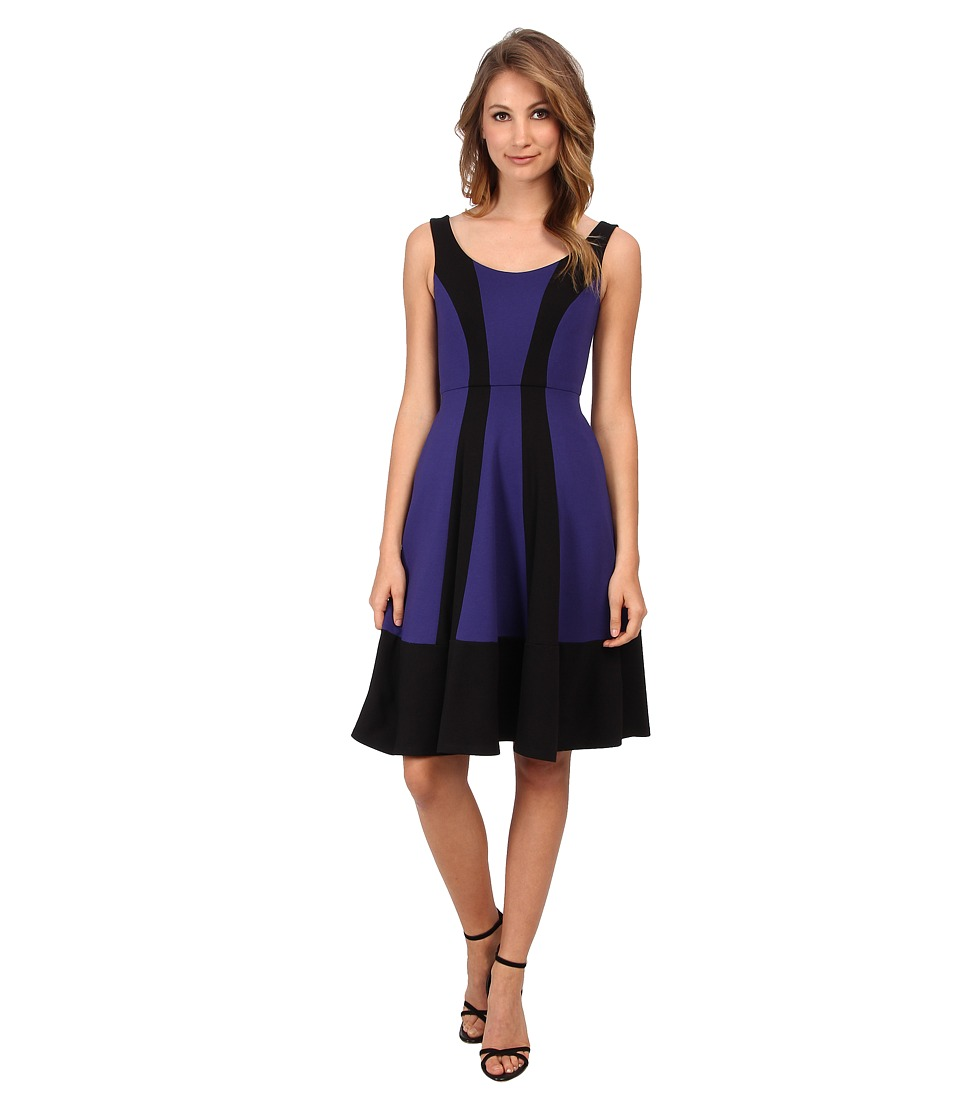 ABS Allen Schwartz Color Blocked Mid Fit and Flare Dress (Royal) Women