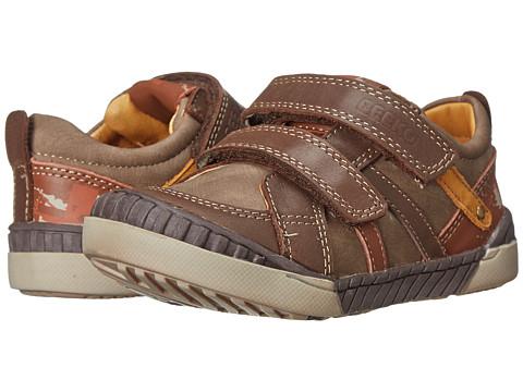 Beeko - Alexander (Toddler) (Brown) Boys Shoes
