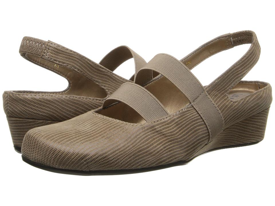 Vaneli - Molly (Taupe Miniliz/Mtch Elastic) Women's Wedge Shoes
