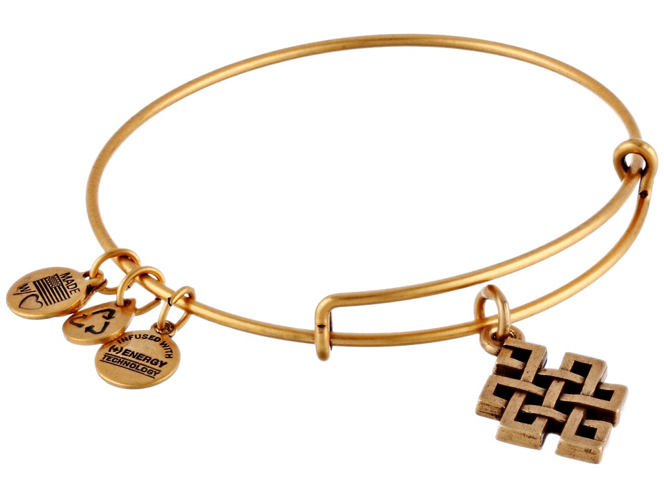 Alex and Ani - Endless Knot Charm Bangle (Rafaelian Gold Finish) Bracelet