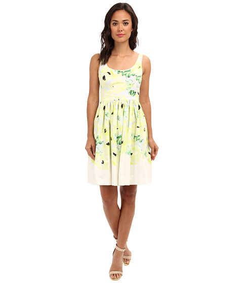 French Connection - Holiday Poppy Cotton 71BOB (Ice Cooler Multi) Women's Dress
