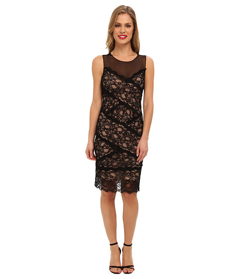 Nicole Miller - Amy Stretch Lace Dress (Black/Nude) Women's Dress