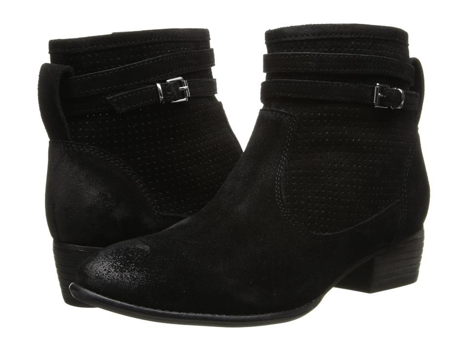 Seychelles - Sanctuary (Black Suede) Women's Zip Boots