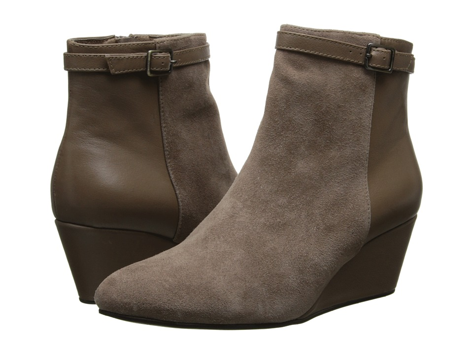 Cordani - Irvine (Taupe Suede/Taupe Leather) Women