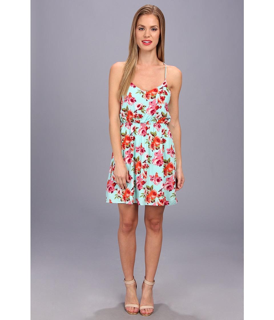 Brigitte Bailey Floral Print Dress Womens Dress (Blue)