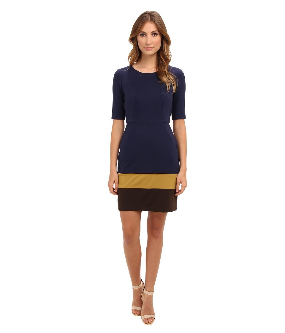 Ivy & Blu Maggy Boutique 3/4 Sleeve Color Block Sheath Dress Womens Dress (Black)
