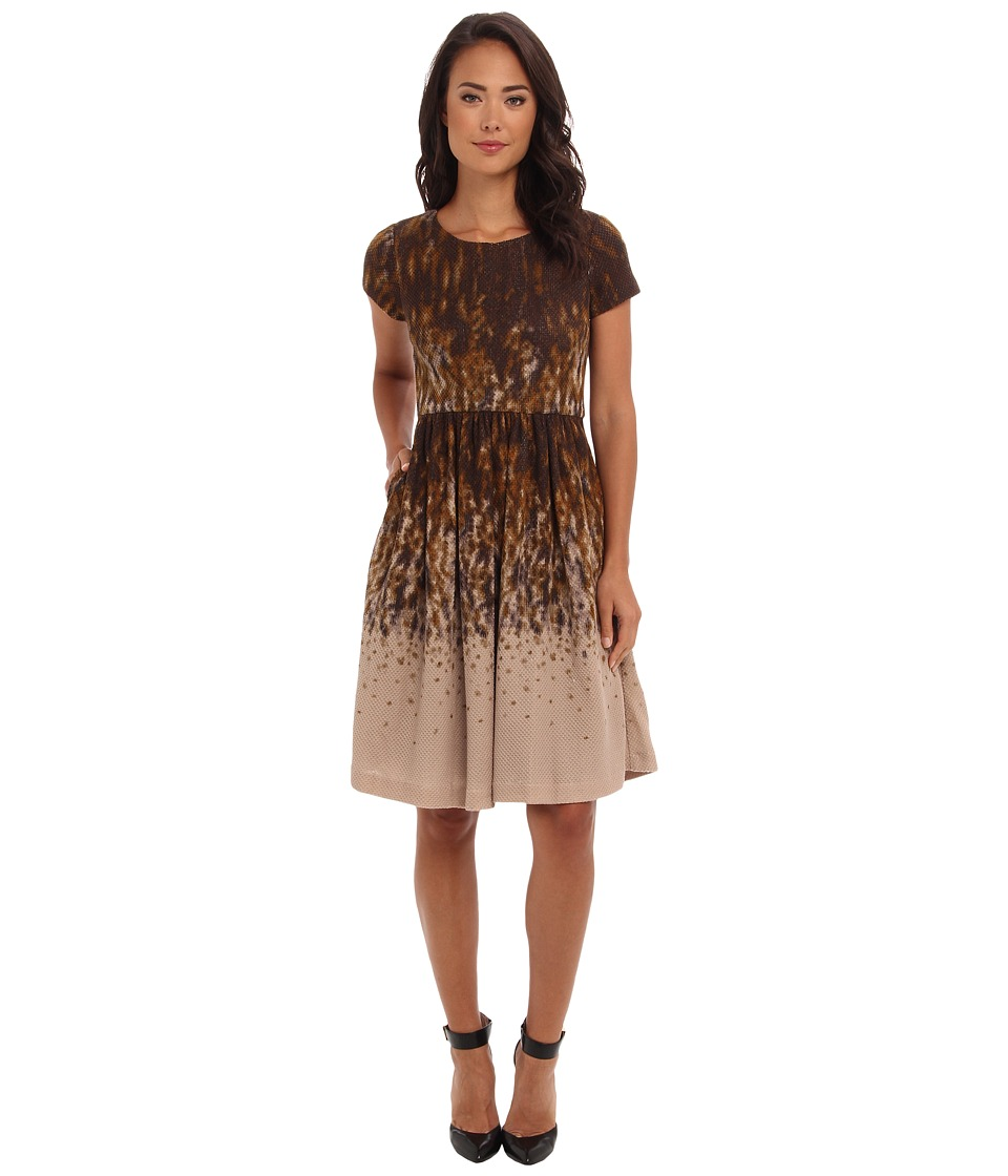 Badgley Mischka - Scoop Neck Flare Skirt (Brown) Women's Dress