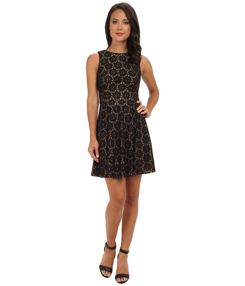 Nicole Miller Daisy Lace Dress (Black) Women