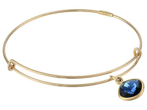 Alex and Ani - Precious Dark Indigo Truth Charm Bangle (Gold/Blue) Bracelet