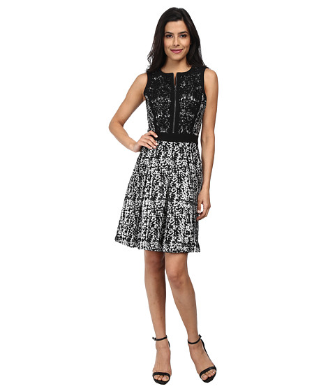 Adrianna Papell - Sleeveless Skater Dress (Black/Silver) Women