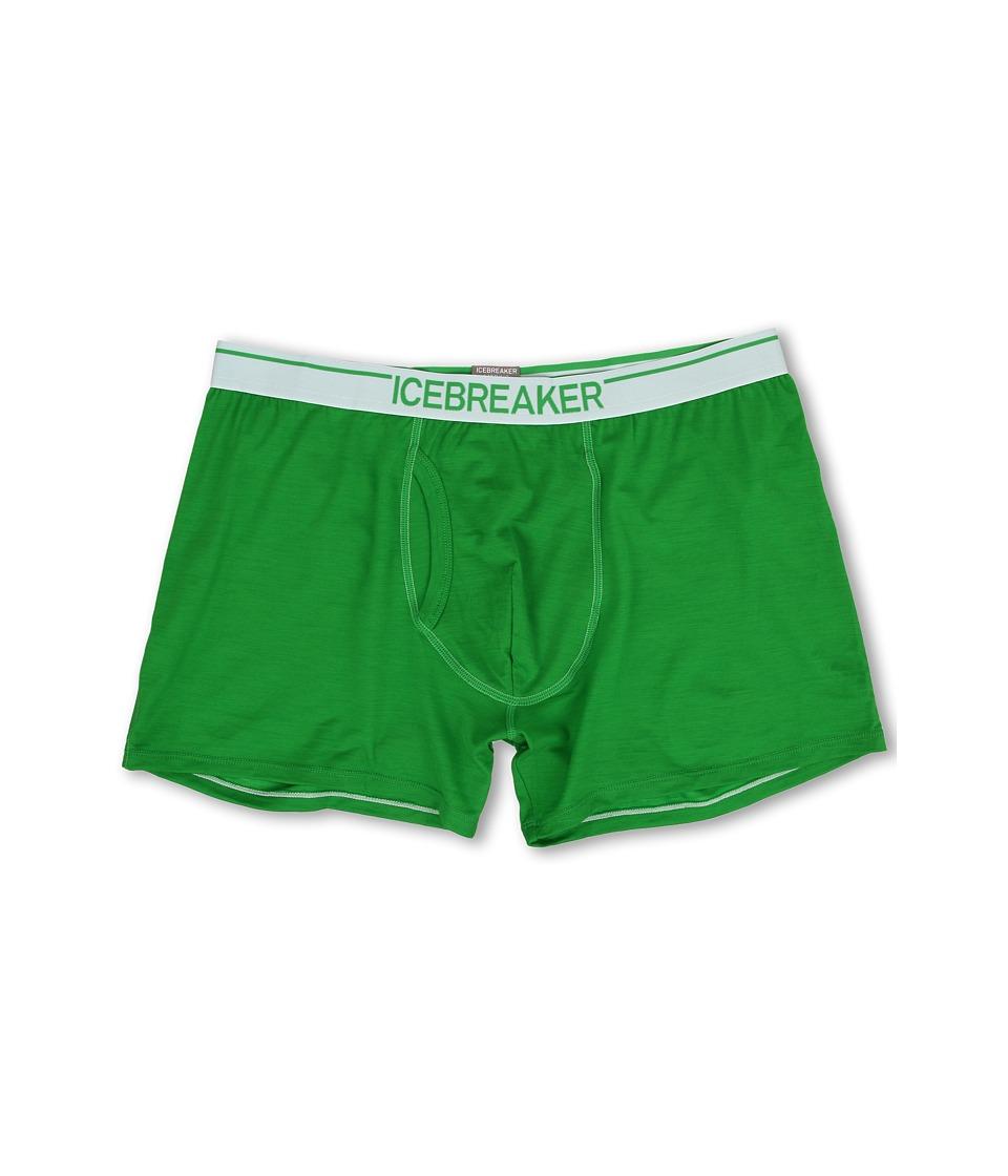 Icebreaker - Anatomica Boxers w/ Fly (Lawn) Men's Underwear