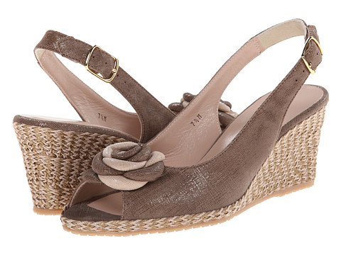 Sesto Meucci - 145 (Noisette Cartizze/Noisette/Beige Cartizze Bow) Women's Wedge Shoes