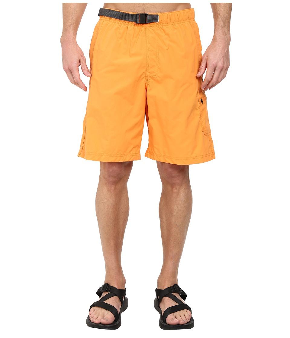 Columbia - Palmerston Peak Short (Koi) Men's Shorts