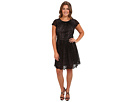 Adrianna Papell Plus Size Pleat Striped Filigree Lace (Black)