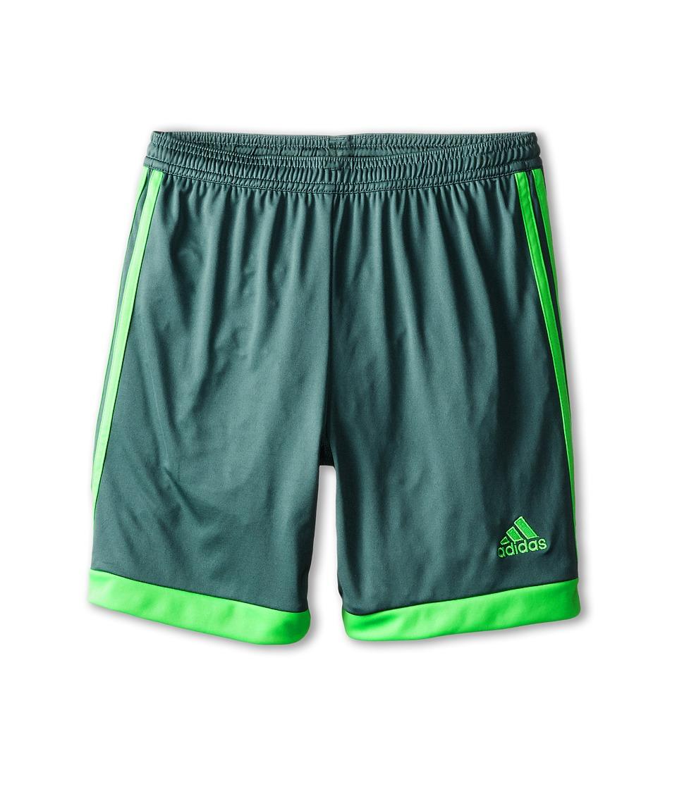 adidas Kids - Tastigo 15 Short (Little Kids/Big Kids) (Vista Green/Flash Green) Girl's Shorts