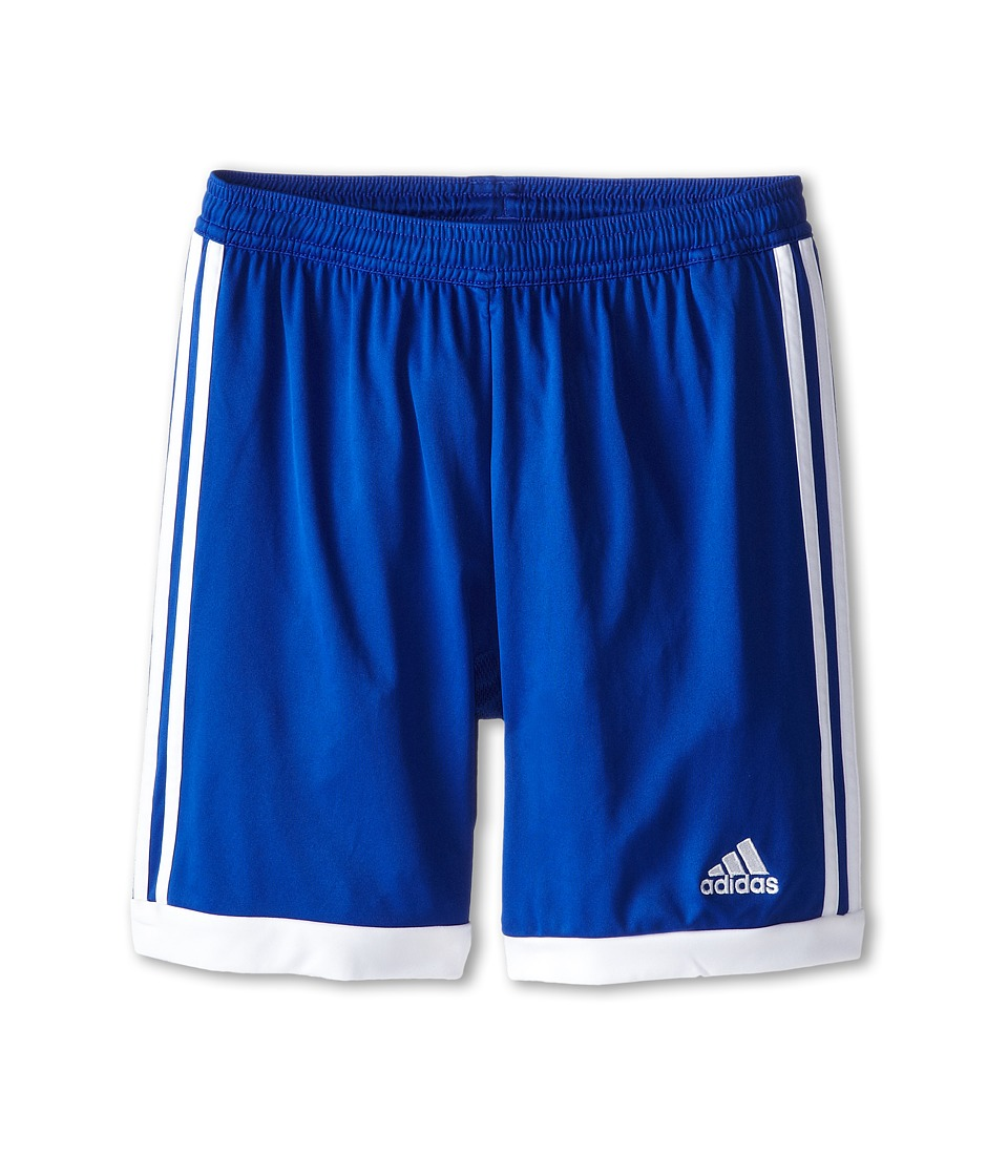 adidas Kids - Tastigo 15 Short-Drydye (Little Kids/Big Kids) (Bold Blue/White) Girl's Shorts