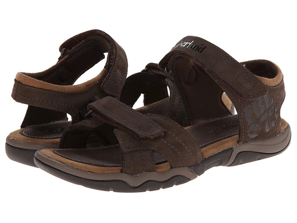 Timberland Kids - Earthkeepers(r) Oak Bluffs Leather 2-Strap (Big Kid) (Dark Brown) Boy's Shoes
