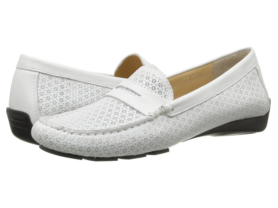 Vaneli - Remy (Off White Nubia Print) Women's Shoes