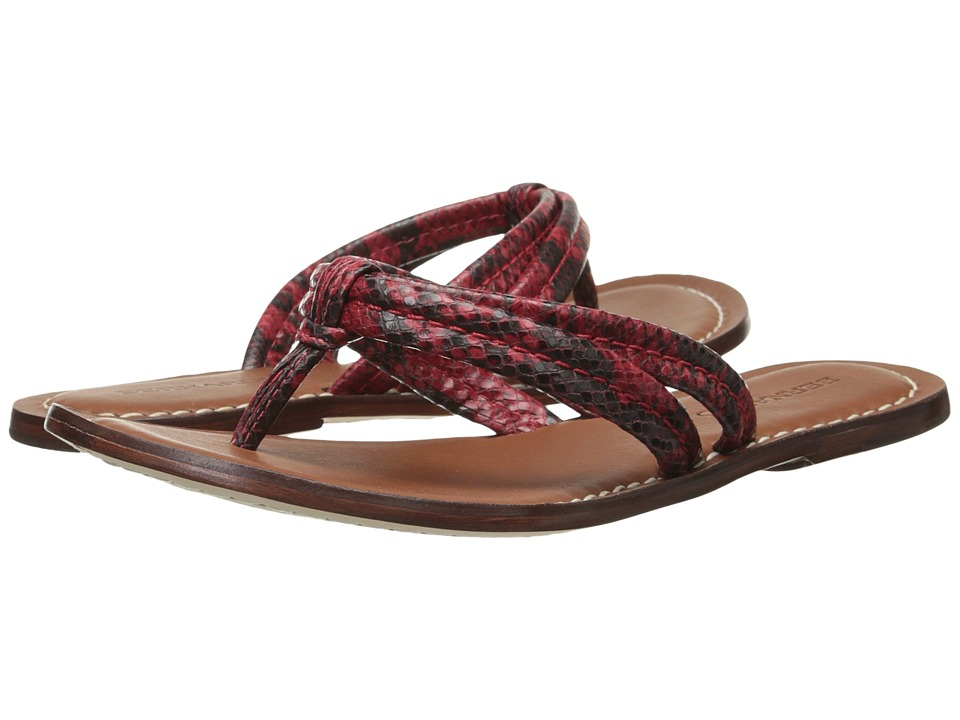 Bernardo - Miami (Red Snake) Women's Sandals