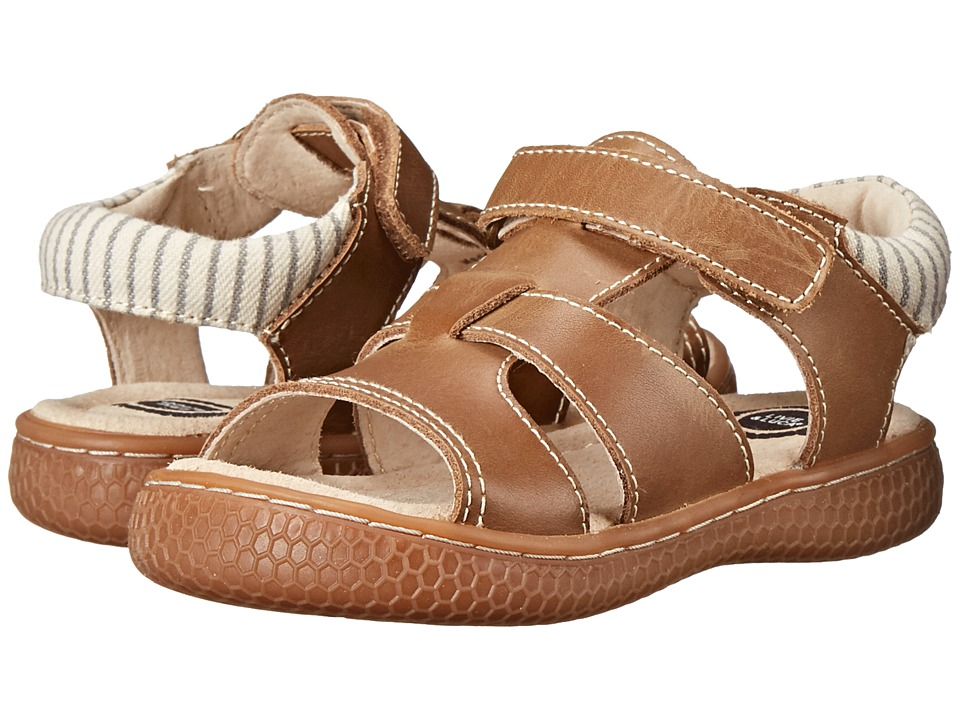 Livie & Luca - Sailor (Toddler/Little Kid) (Brown) Boys Shoes