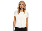 Adrianna Papell Short Sleeve Lace Tee w/ Cotton Back (Ivory)